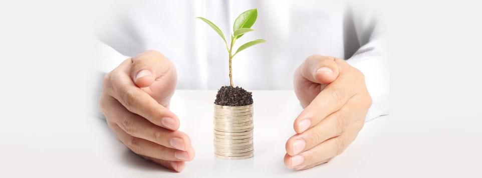 حلول إدارة ثروات واستشارات استراتيجية مصممة بشكل خاص